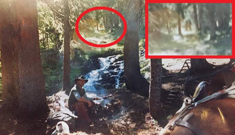 Снежный человек в лесу: житель Колорадо поделился с общественностью уникальной фотографией