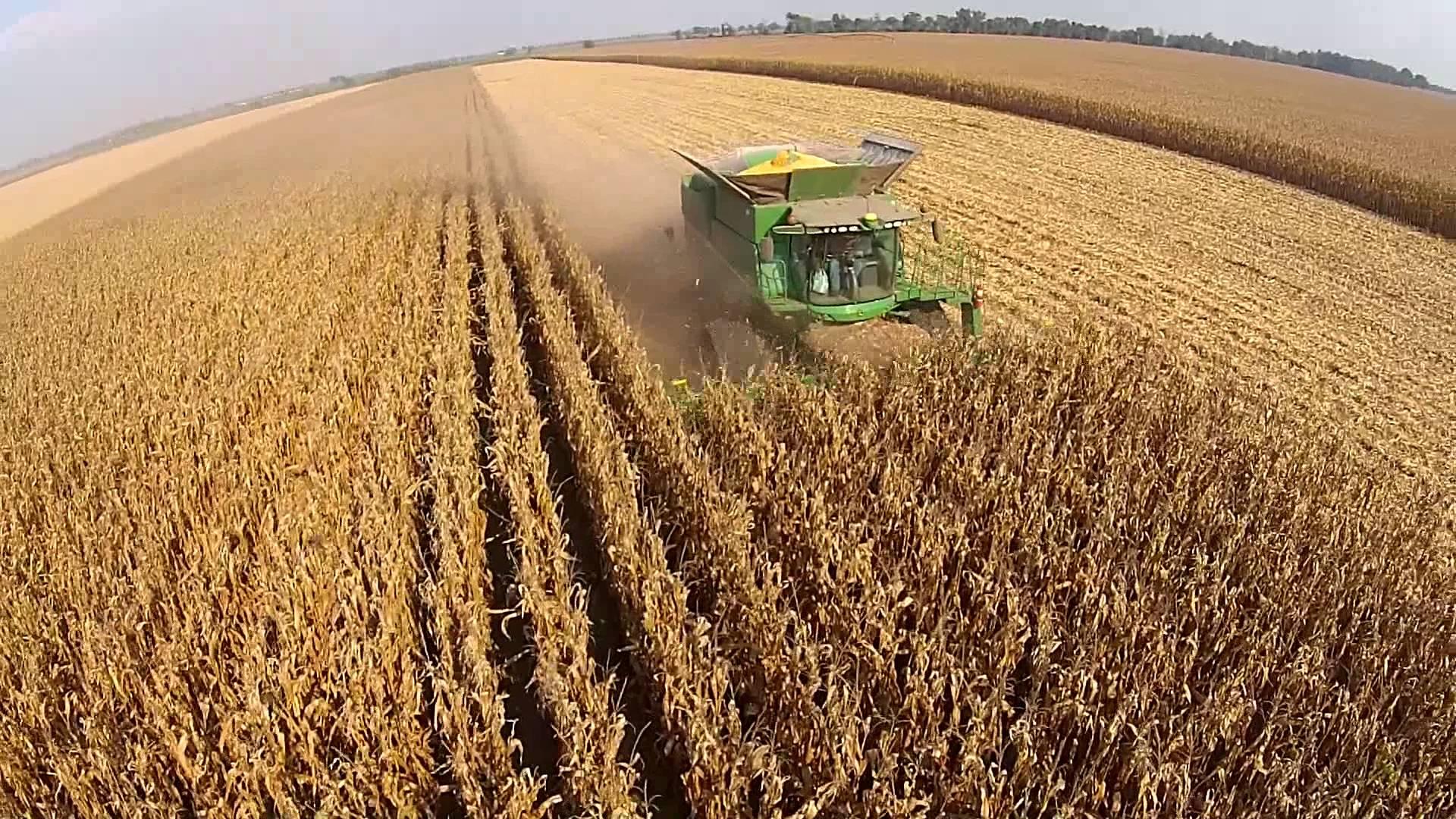 Ученые: геоинженерия позволит справиться с глобальным потеплением, однако негативно скажется на урожаях