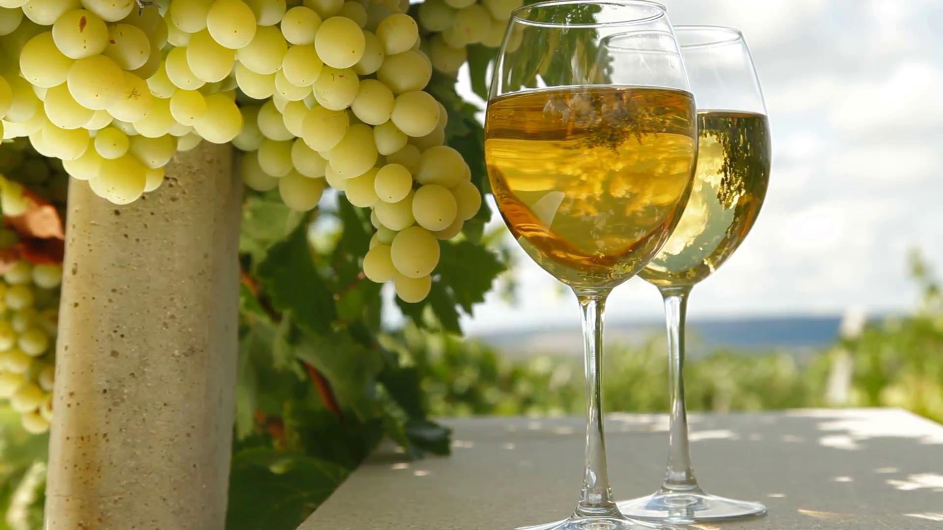 Специалисты рассказали какое вино полезно пить в жару