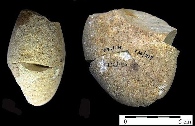 В Израиле обнаружен самый древний инструмент для обработки шкур животных возрастом 350 000 лет