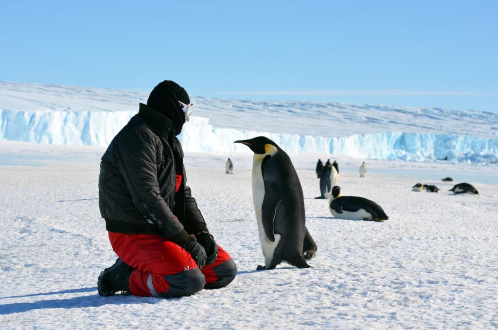 Антарктида: что скрывает подо льдами самый малоизученный континент планеты