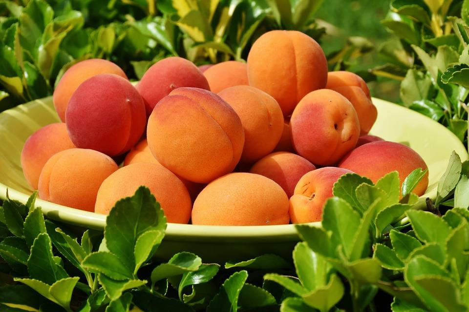 Узнав эту правду про абрикосы начнете их есть прямо сейчас